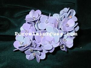 porcelain hydrangea in bicolor purple and blue
